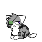 Flammole's avatar