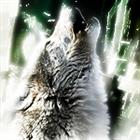 brandoncstoudt's avatar