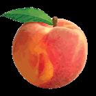 imkimchi's avatar