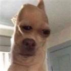 Kirbyguy's avatar