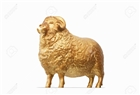 6_Golden_Sheep's avatar