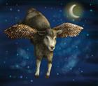 ForCenturies's avatar