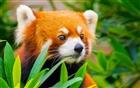 Ucodeq's avatar