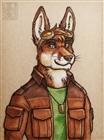 StitchTheFox's avatar