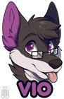 NinjaDogDB's avatar