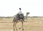 Wahooman's avatar