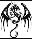 The_Dragon_King's avatar