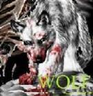 wolfnwo2003's avatar
