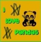 PandaNati0n's avatar