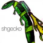 shgecko's avatar
