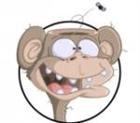 Decerebrated_Individual's avatar