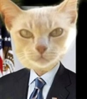 Andrewkroger1's avatar