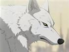 zXTechnoWolf's avatar