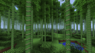 185px-Bambooforest