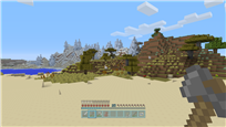 Minecraft  PlayStation®3 Edition_3