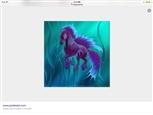 JellyFish horse