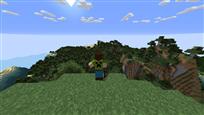 Minecraft Hill Final 2
