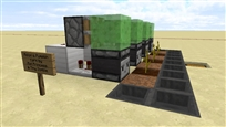observer-pumpkin-farm4
