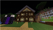 my house i built with the wood