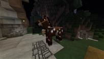 Horse 1.13