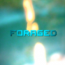 View Foraged's Profile