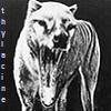 gwynraven's avatar