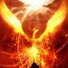 Solrex's avatar