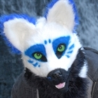 View lykybloodpaw's Profile