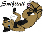 View Swifttail's Profile