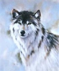 View WolfboyL's Profile