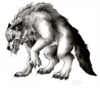 View Wolfman545's Profile