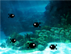 View gatfish's Profile