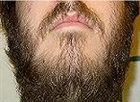 View Beardwhip's Profile