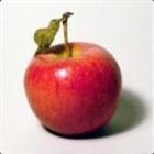 TheAppl3's avatar