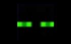 nn22nn22's avatar