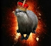 DivineOtter's avatar
