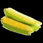 Gritz's avatar