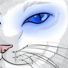 glitterpaws's avatar