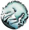TheArticFox's avatar
