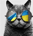 Moneybawb's avatar