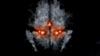 soulstealer34's avatar