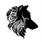 View zxdarkwolf's Profile