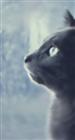 Phantom_Zelon's avatar