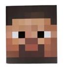View MinecraftUser13's Profile
