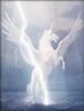 Electric_Pegasus's avatar