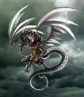 XVPlaer's avatar