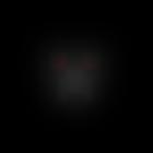 Mudkip74's avatar