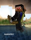 View AgentM1's Profile