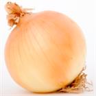 View Onion's Profile