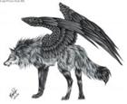 Wolfy2377's avatar